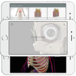 Anatomed 3D imagen médica